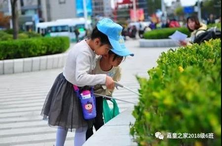 """爱心护家园 青岛嘉峪关学校2018级""""小海星""""们做公益"""